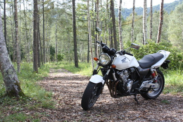 cb400sf_in_forest.jpg