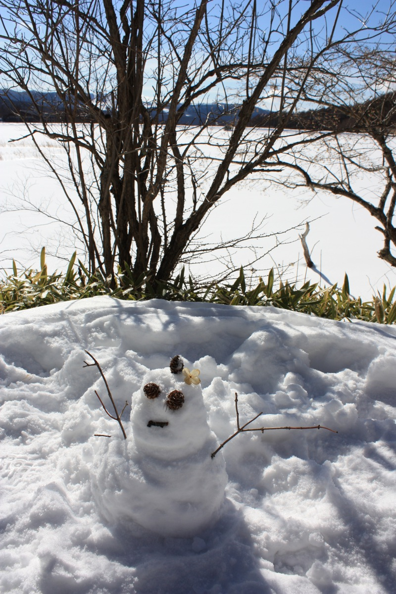 little_snowman.jpg