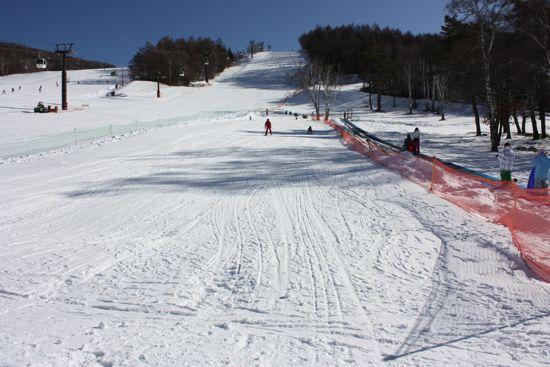 白樺高原国際スキー場_キッズファンタジーワールド