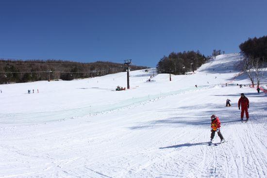白樺高原国際スキー場_メインコース