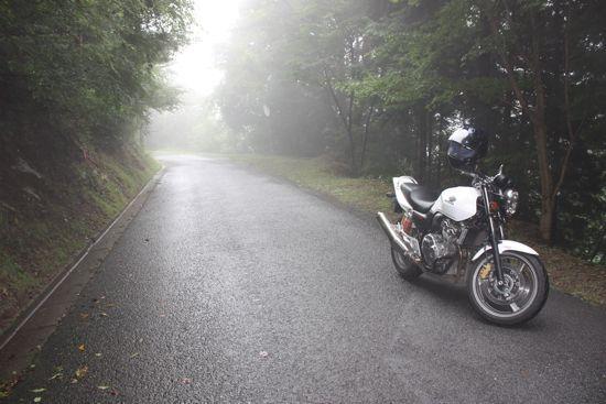 岐阜県道257号南側林道の霧