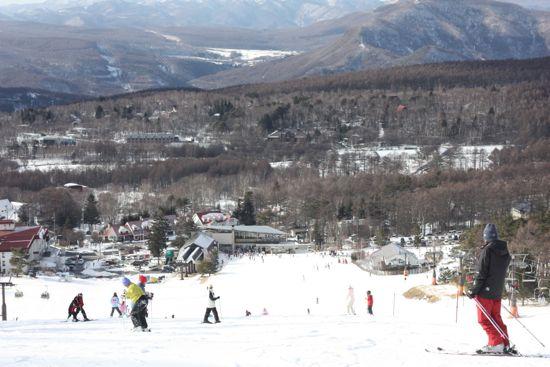 白樺高原国際スキー場1